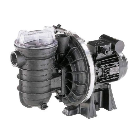 Pompa piscina sta rite s5p2r duraglas 1 0 hp tri per acqua - Piscine acqua salata ...
